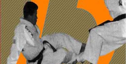 Hapkido Sitting Technique #13