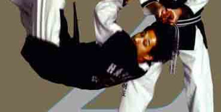 2 Hapkido Primary 8th & 7th Gup DVD #2