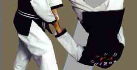 1 Hapkido Basic 10th & 9th Gup DVD #1
