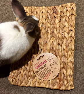 Product Review: Rosewood Naturals Chill 'N' Chew Mat