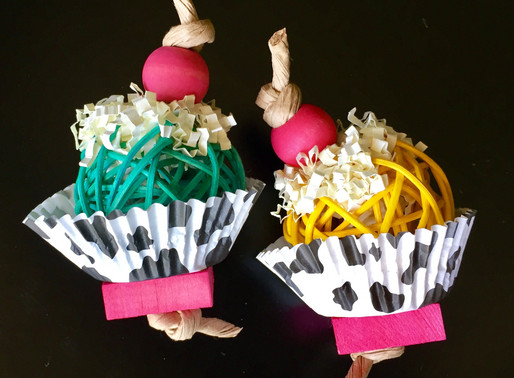 Sneak peak: Frosted cupcake chew & toss toys