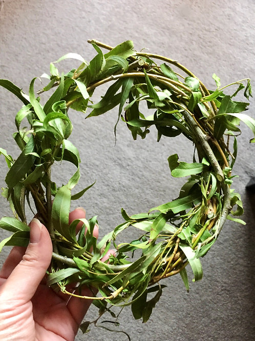 Leafy Willow Wreath