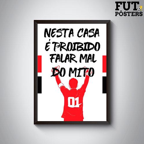 Pôster Nesta Casa São Paulo - Ceni