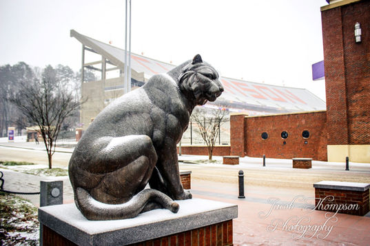 Clemson tiger statue snow
