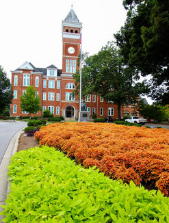 Clemson Tillman Hall flowers