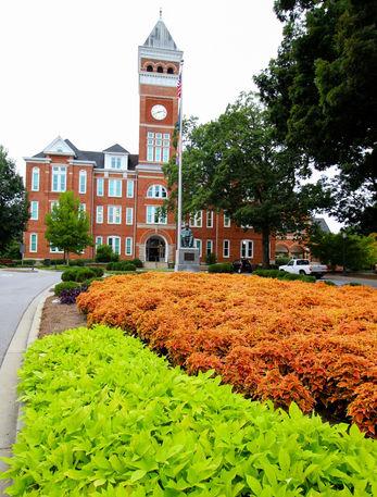 Clemson Tillman Hall flowers