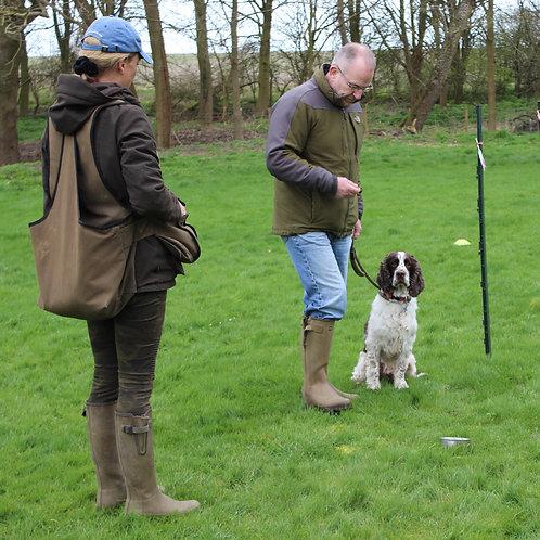 1-2-1 Gundog Training Session at The Old House Farm