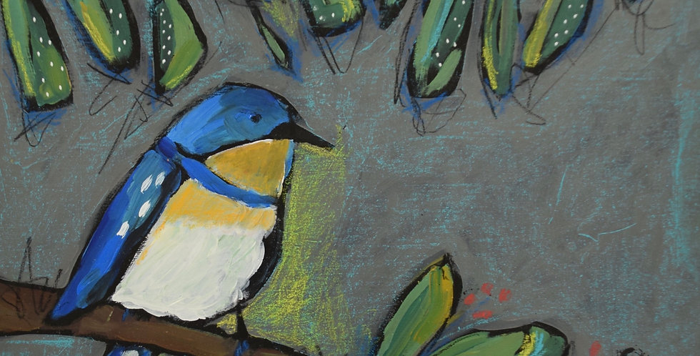 Summer Bluebird