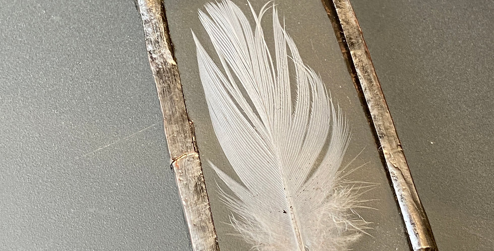 Feather Finding