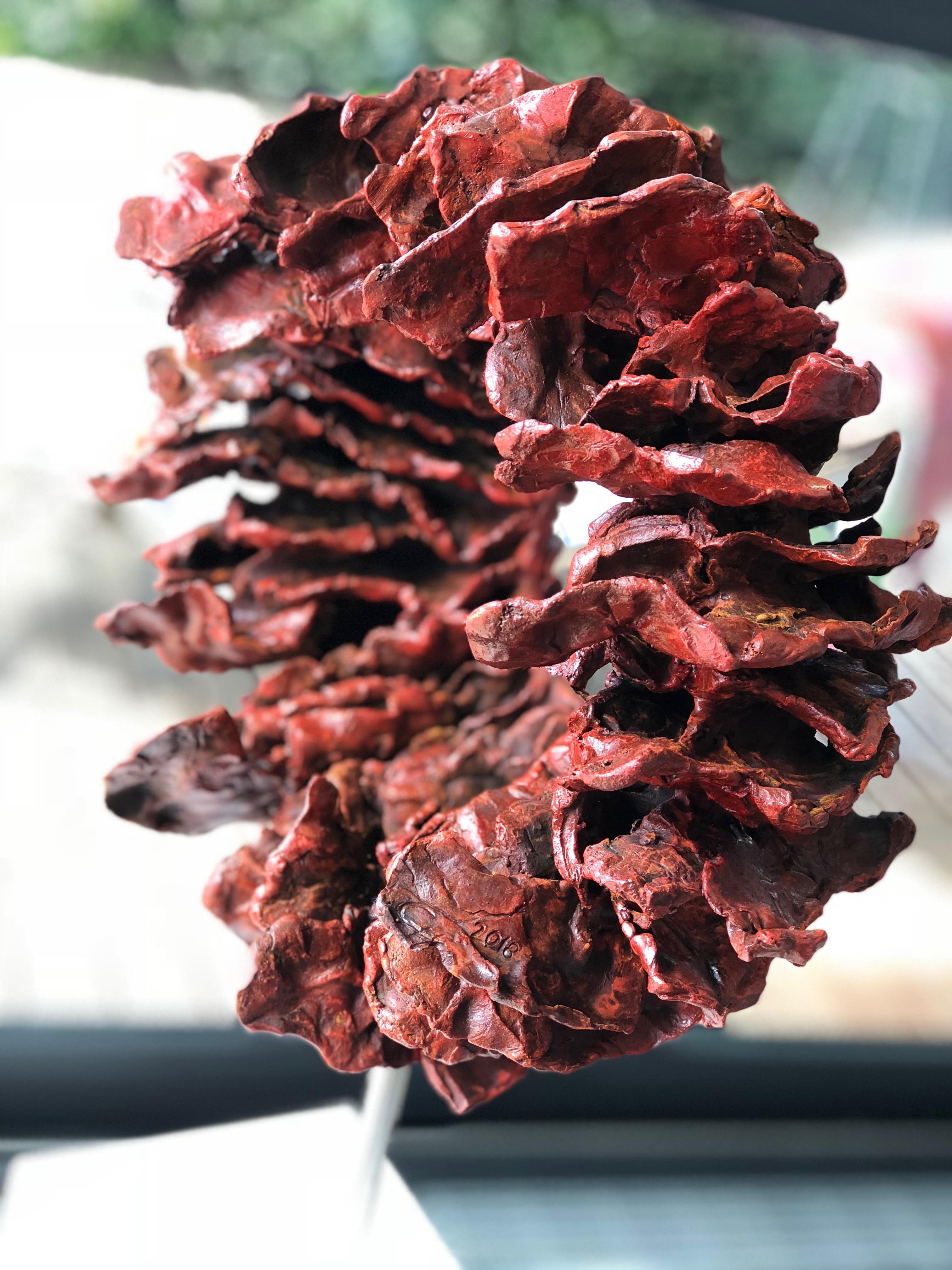 Corallo rosso storm piccolo