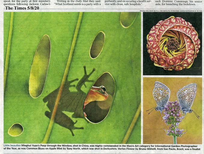 Times 5 Aug 20.jpg