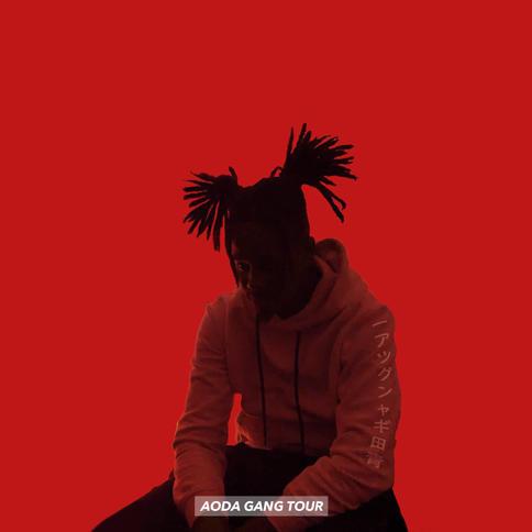 AODAGANGTOUR 2 - album cover