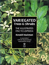 Variegated Trees and Shrubs.jpg