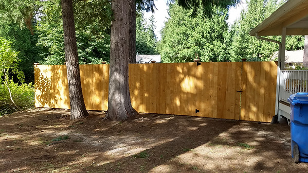Prestain Straightboard Fence with Postcap Reveal