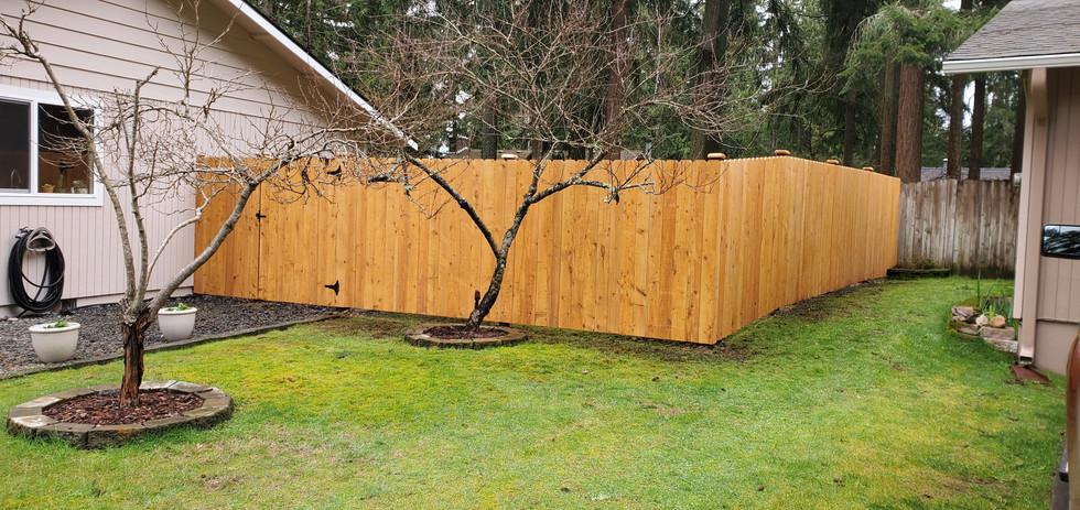 Dogear Prestain Straightboard Fence