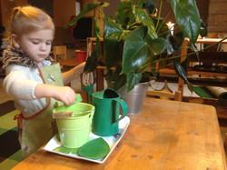 Prendre soin des plantes