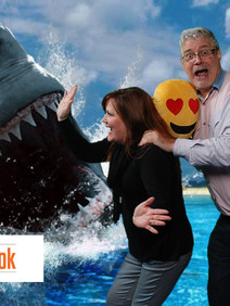 Green screen photo background with shark