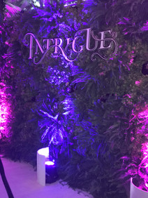 Intrigue event entrance