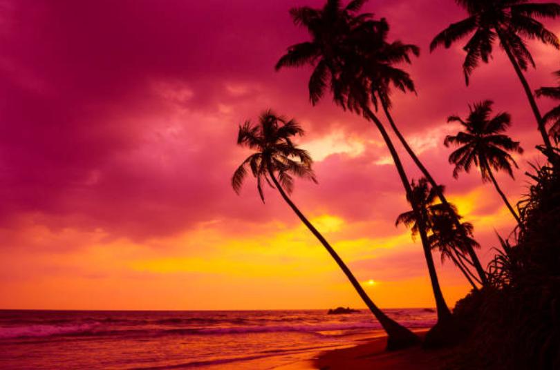 Beautiful sunset at incentive trip in Mo'orea