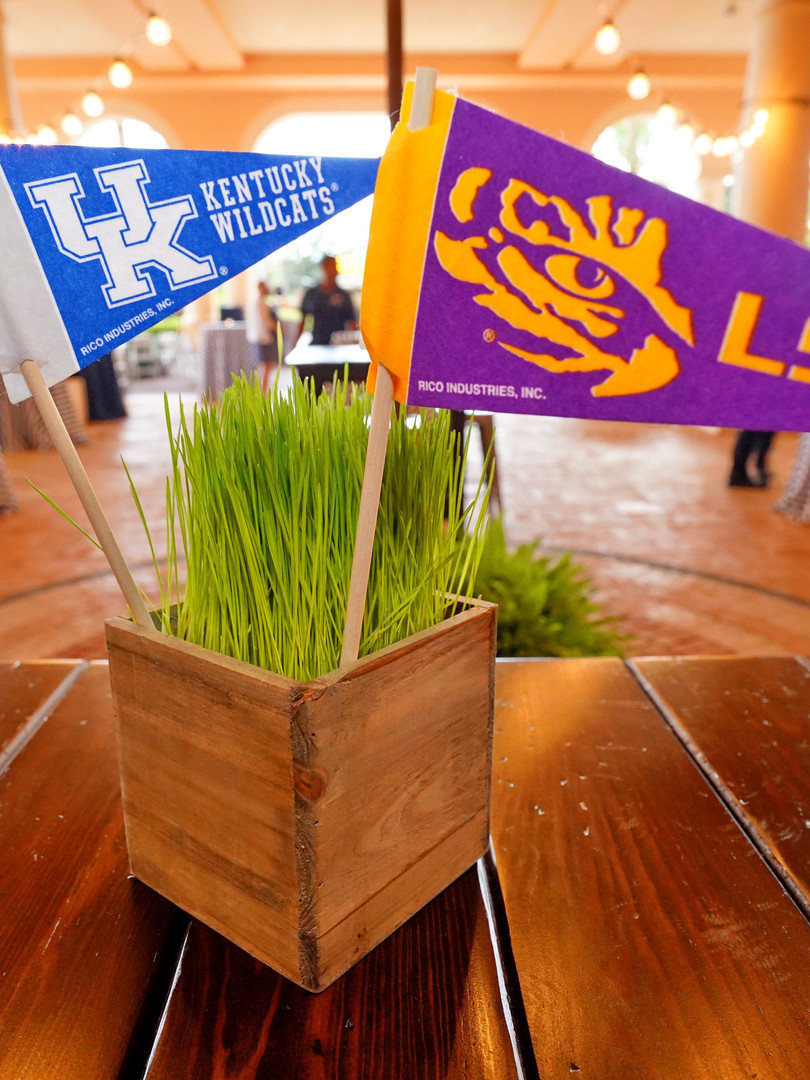 Collegiate themed flags for the tailgati