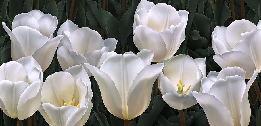 Nine White Tulips.jpg