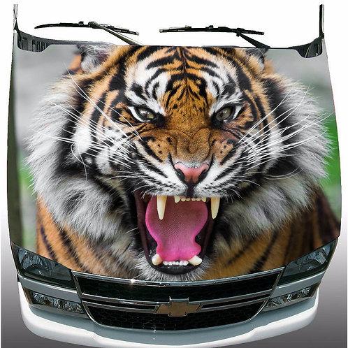 Tiger-Hood-Wrap-Vinyl-Graphic-Decal-Sticker-Wrap-Truck     U