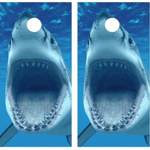 Great White Shark Cornhole Board Skin Wraps FREE LAMINATE