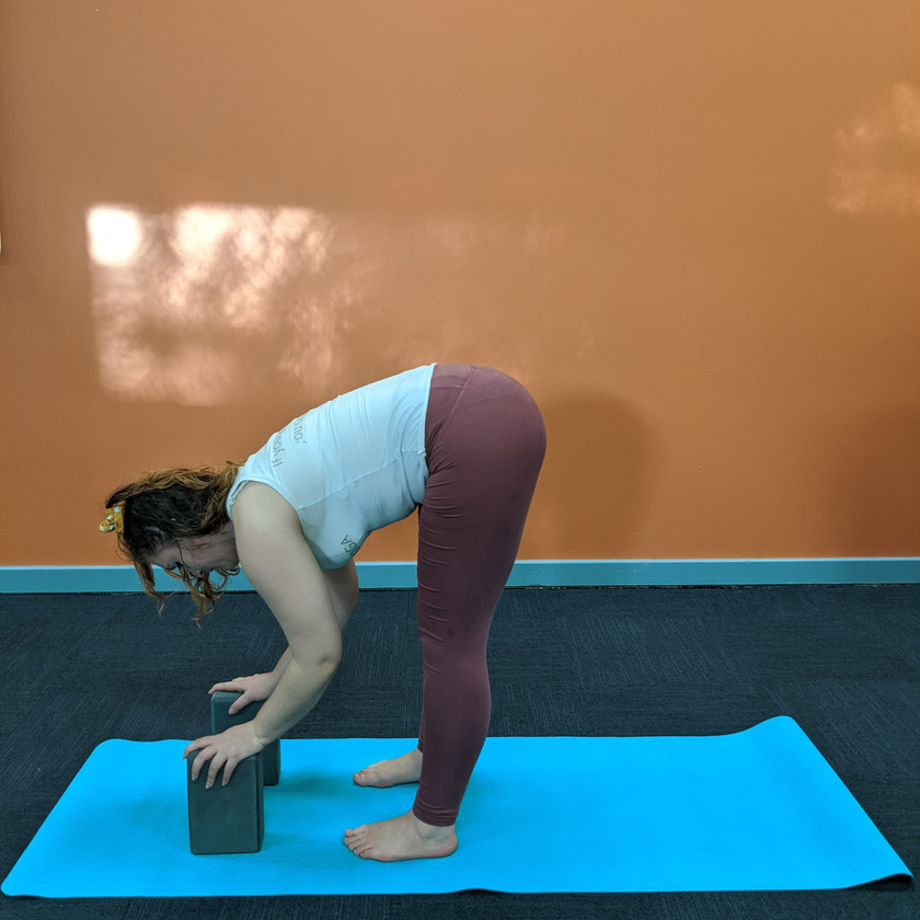 Leah doing a forwards fold with hands on two blocks