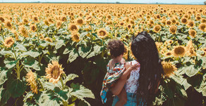 Northern California Rec's: Sunflowers, Russian River & A Historic Ranch