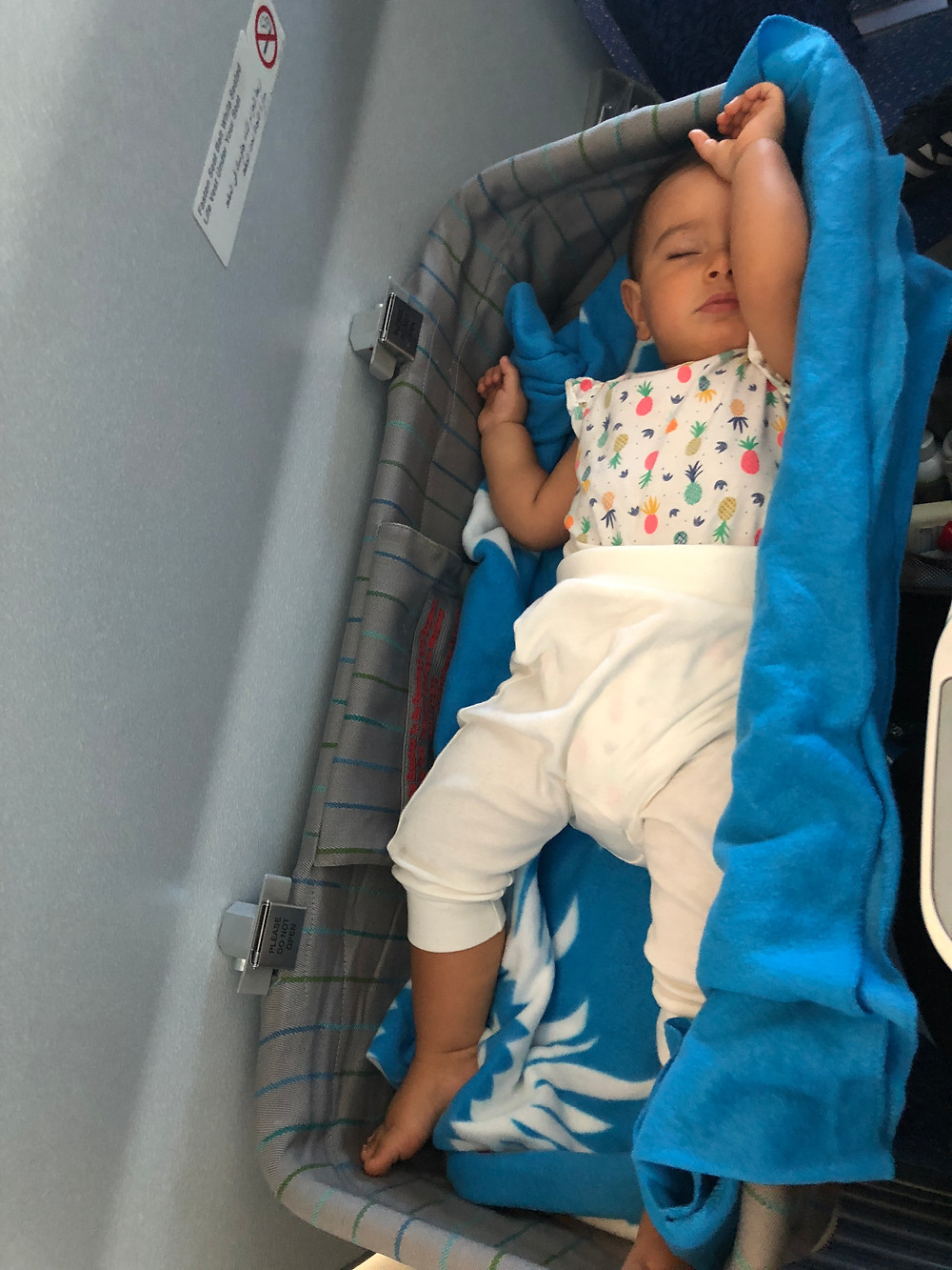 bassinet flying with baby travel with baby