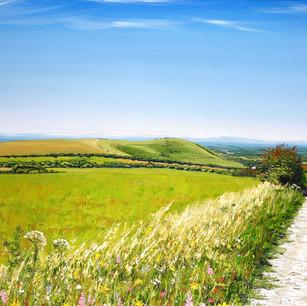 South Downs Way to Wolstonbury Hill