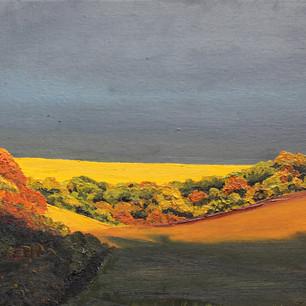 Autumn Evening Sunlight