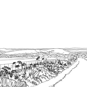Wolstonbury Hill and beyond