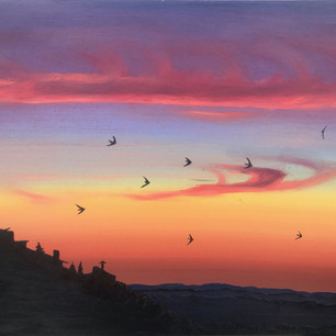 Swifts over Marvao