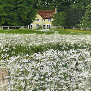 Cow parsley cottage