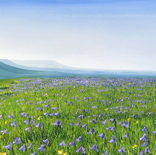 Bluebells on Newtimber Hill