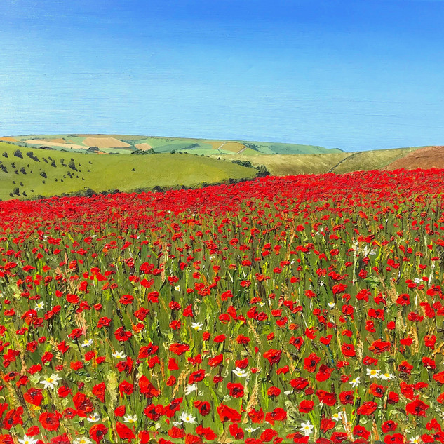 Poppies over the Downs