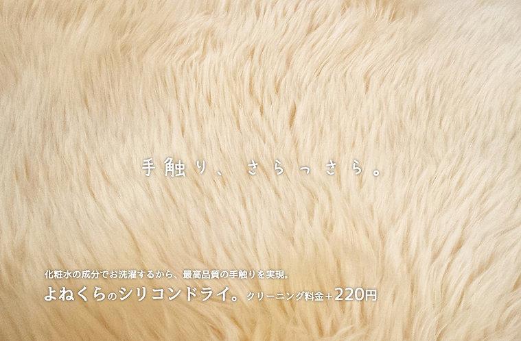シリコンドライ.jpg