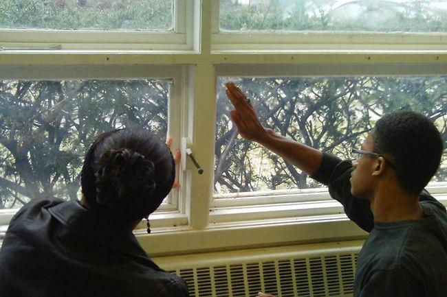 Weatherizing Windows.jpg