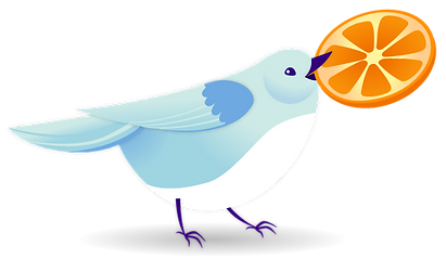 Bird_Footer.png