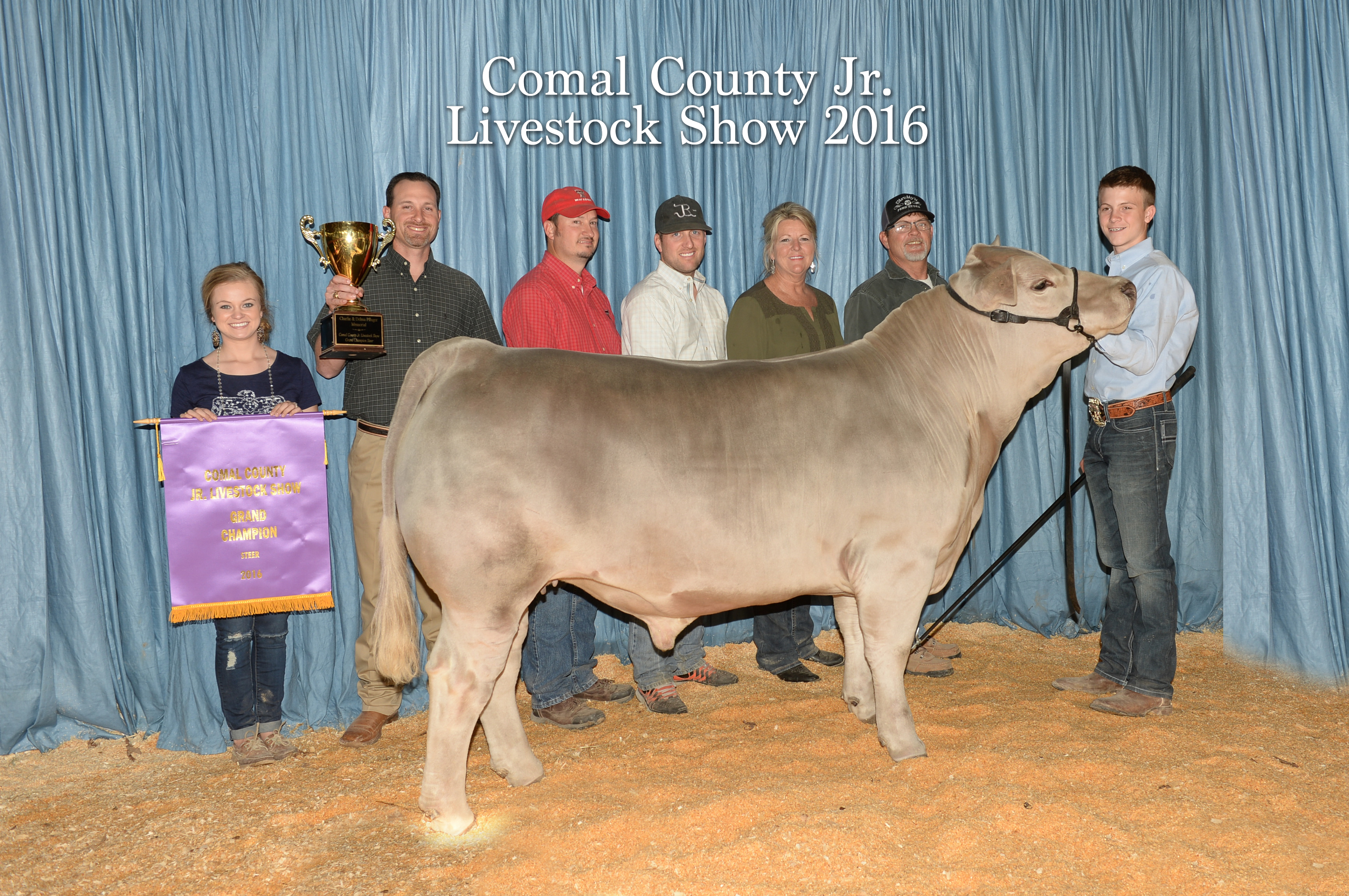 Grand Champion Steer Comal County