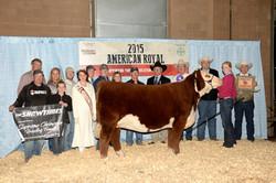 Supreme Champion 2015 American Royal