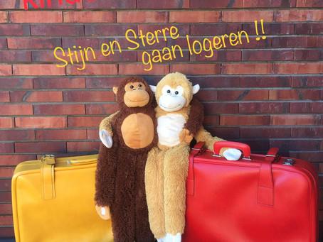 Nieuwe kindervoorstelling :                                      Stijn en Sterre gaan logeren!!