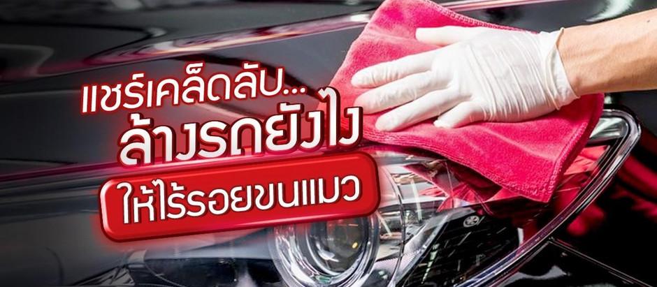 แชร์เคล็ดลับ...ล้างรถยังไงให้ไร้รอยขนแมว