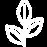 Carmel Soap Logo.png