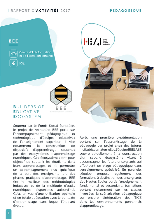 Rapport_activité_Synhera_2017_-_Page_BEE