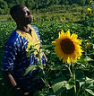 Sola%20Sunflower%20%F0%9F%8C%BB%20King._