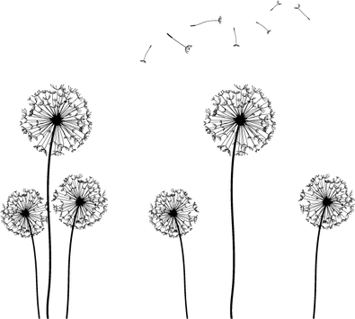 seed-clip-art-dandelion-silhouette-vecto