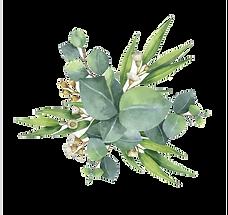 gum-trees-euclidean-vector-leaf-flower-w