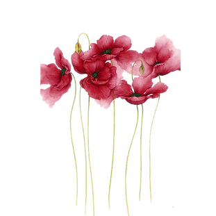 watercolor-painting-flower-drawing-art-w